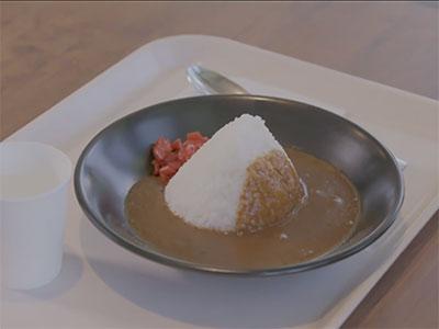 fujiq curry